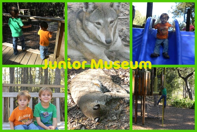 junior museum