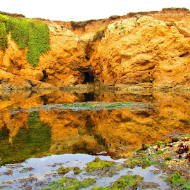 Fort Bragg discovery by Bob Ward - Landscapes Caves & Formations