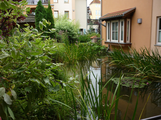 2-Zi-Ferienwohnung LAGUNA-Residenz am Meer, Ostseebad Kühlungsborn