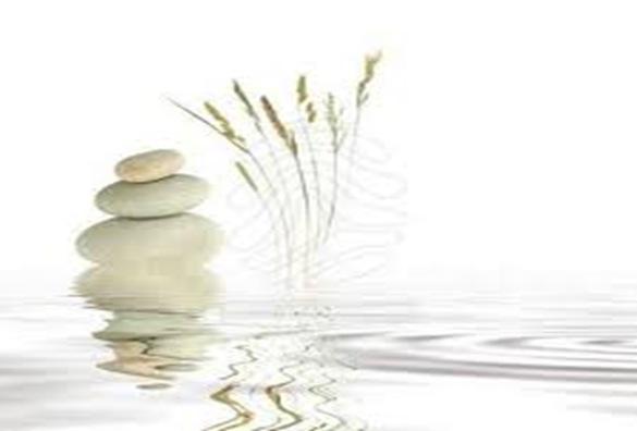 Frases Zen. filosofia zen