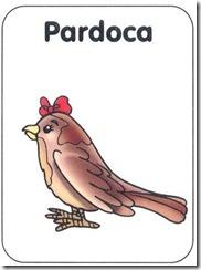 PARDOCA