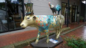 Cow2.G1IZ8iMgrgzT.jpg