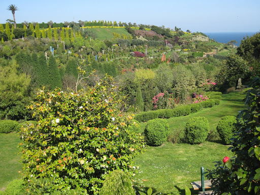 Rase una vez niels h abel y evariste galois jard n for Jardin botanico numero telefonico
