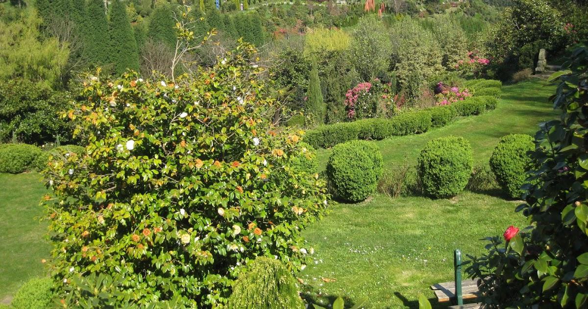 Rase una vez niels h abel y evariste galois jard n for America todo un inmenso jardin
