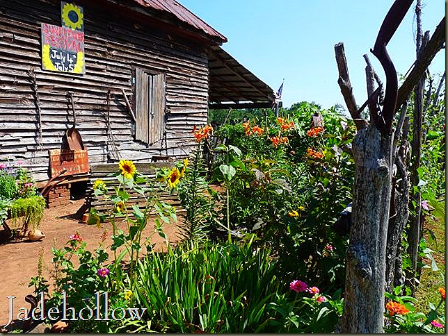 SunflowerFest14