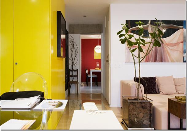 Cores e planta na sala. Fotografia de Fernanda Petelinkar