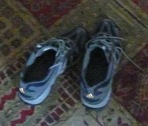 Sheva Apelbuam-my dads sneakers