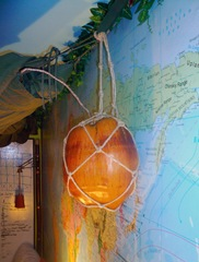 My Coconut truphy - Sheva Apelbaum