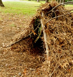Wilderness Survival Debris Hut sideview by Sheva Apelbaum