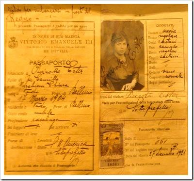 Immigrant Passport-Sheva Apelbaum