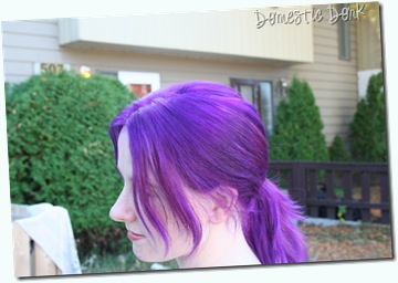 purple hair dye color