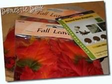 fall wreath craft easy cheap supplies
