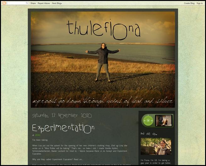blog nov2010