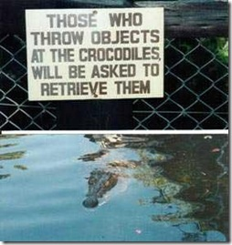 funny_signs_71