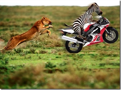Funny Biker #5