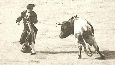 Fernando el Gallo-Recorte 001 DETALLE