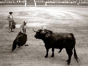 Rafael Gómez Ortega (EL GALLO). Nació en la madrileña calle de la Greda (hoy de los madrazo) el 17 de julio de 1882, pero se le ha considerado siempre sevillano porque de Sevilla fué toda su estirpe y a la vera de la Giralda se crió y residió toda su vida.Tomó la alternativa en la ciudad de Sevilla de las manos de Bombita (Emilio), el 28 de septiembre de 1902, con toros de Otaolaurruchi.este doctorado se lo confirmó Lagartijo-chico en Madrid el 20 de marzo de 1904, por cesión del toro Barbero, negro y de buen tipo, de la ganadería de Veragua.Su apogeo fué desde 1910 a 1914, en cuyos años se le considero imprescindible en todo cartel de altura; siguio toreando hasta el año 1935, en varios ciclos.