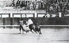 Miguel Freg Verónica al toro que le mató 001