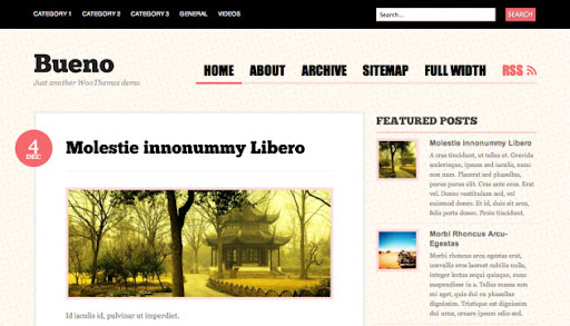 bueno-tema-wordpress