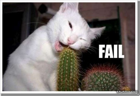 gatos divertidos patatitasylimones (3)
