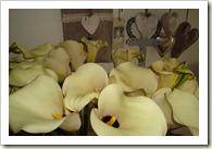 bloemen 003