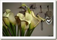 bloemen 006