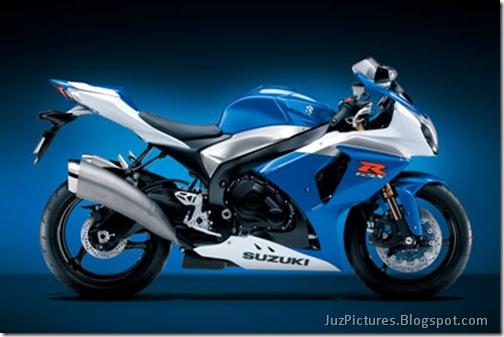 2010_Suzuki_gsx-r-1000_14