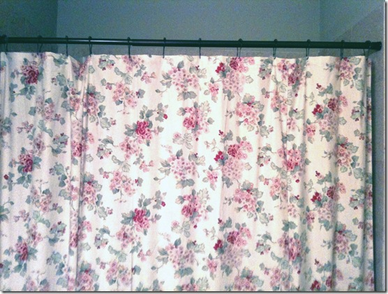 Shower curtain full with hooks