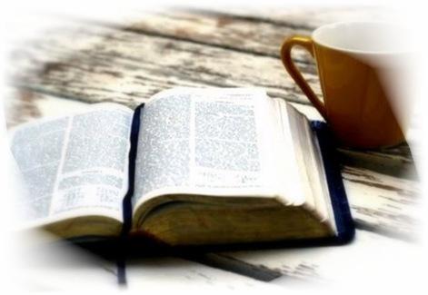 bible[8]