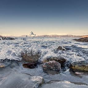 Small waves by Benny Høynes - Nature Up Close Water ( waves, drops, sea, saltwater, rocks, norway )