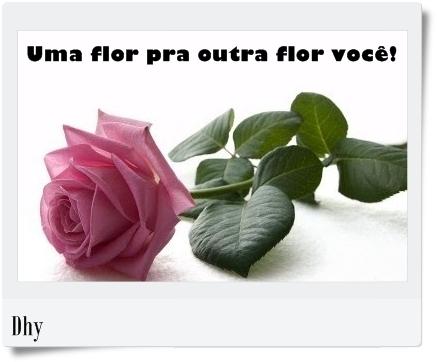 flor-pra-vc.jpg