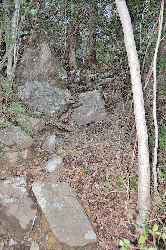 三ツ瀬明神山鎖場後の急登の写真