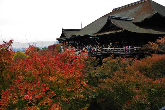 紅葉の清水の舞台の写真