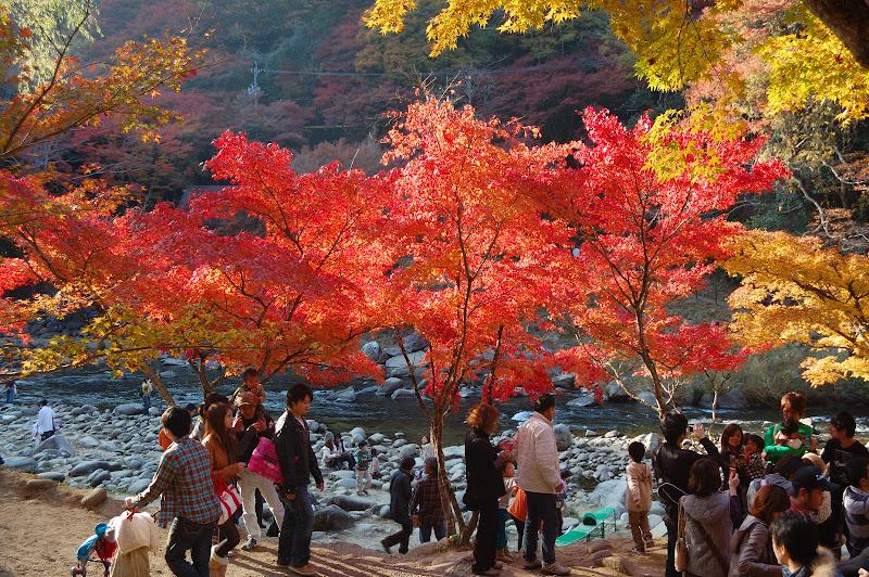香嵐渓の紅葉と観光客の写真