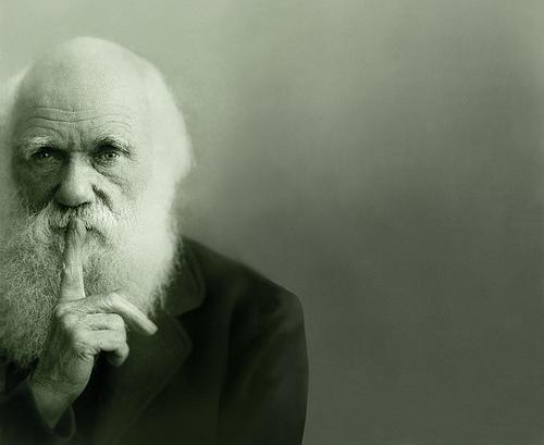 Чарльз Дарвин - Подумайте...