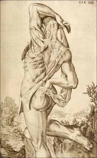 Giulio Casserio (ca. 1552-1616) (anatomist), Odoardo Fialetti (artist), Venice, 1627. Copperplate engraving