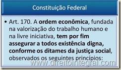 Constituição Federal. Art. 170 - Ordem Econômica.
