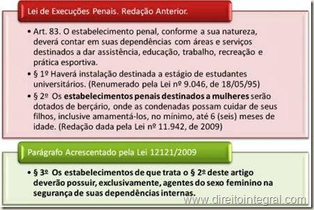 Lei 12121/2009. Penitenciárias Femininas. Segurança Interna Feita Apenas por Mulheres.