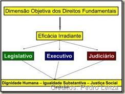 Dimensão Objetiva e Eficácia Irradiante dos Direitos Fundamentais.