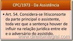 Art. 54. Considera-se litisconsorte da parte principal o assistente, toda vez que a sentença houver de influir na relação jurídica entre ele e o adversário do assistido.