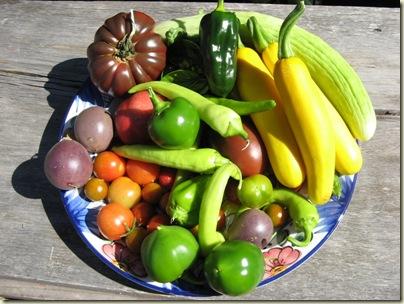 Garden Produce 018 800x600