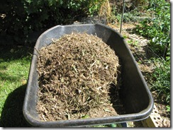 Mulch Making-4