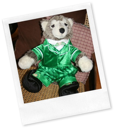 leprechaun build a  bear