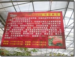 GuangZhou 2009 208