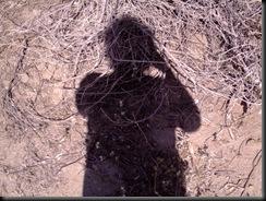 Desert Shores - 2009 020