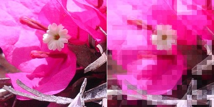 Pixelar imagenes con Fireworks