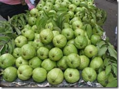 Vietnamese Guava