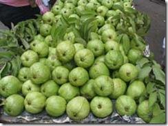 Vietnamese Guava