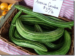 armenian_cucumber
