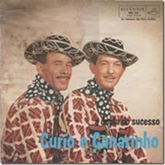 curio_canarinho_dupla